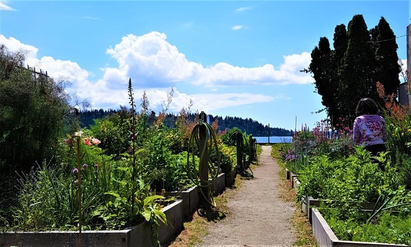 West Vancouver Community Garden